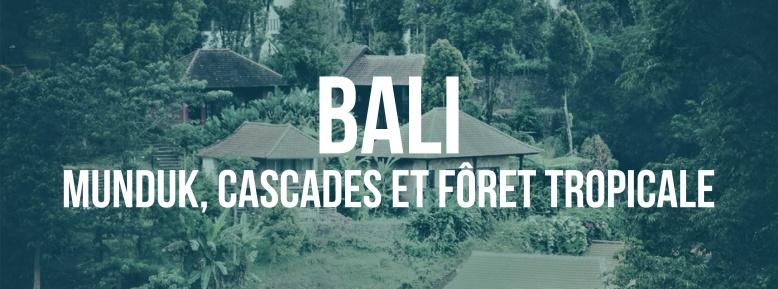 Bali munduk